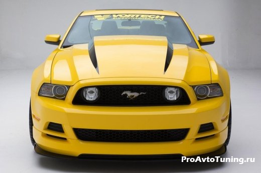 тюнинг Mustang Yellow Jacket