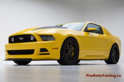 Mustang Yellow Jacket